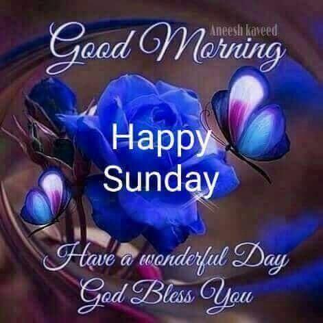 Happy Sunday! #goodmorning-roposo #goodmorning #dailywisheschannel #sunday #dailywishes #happyvibes