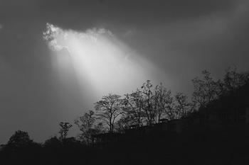 #forest #near  #rishikesh  #haridwar  #ganga #india  #yoga #peace #beautyqueen  #beautifulpic #travel  #hlpkbphotography #indian travel blogger #checkitout  #google  #work  #fish  #meditationclass  #riverrafting  #jumping  #aliabhatt  #actor  #photography  #jacket