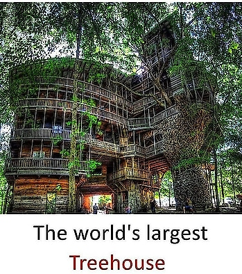 #largest #treehouse