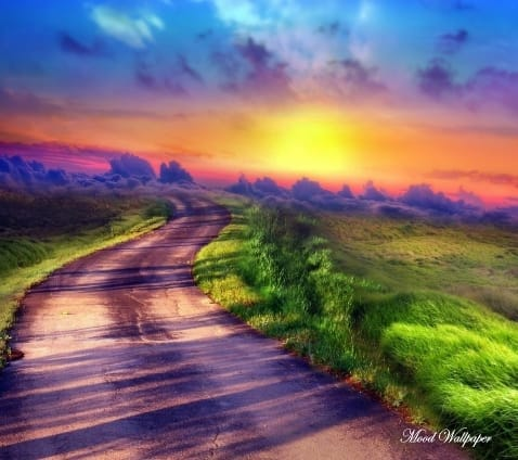 #amazingplaces #natural  #worldwidedelivery #cool #love #wonderful #amazing #photography #capture #mood #dream #art #artist #colourful #beautiful-life #mood #wallpaper #roposo #roposophotography #roposopic #roposostyle