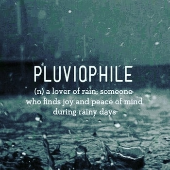 #pluviophile  #pulviophile ☔️ #n #a #lover #of #rain  ; #someone  #who  #find  #joy  #peace  #of #mind  #during  #rainy #day  #lovequotes  #lovepeople  #lovenature  #rainy  #love  #freedom  #peaceofmind  #mindfulness  ##lifequotes  #life  #goodmorning  #goodmorningpost  #goodmorningworld