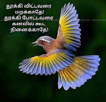 #tamilstatus #tamilquotes #@vasanth1035