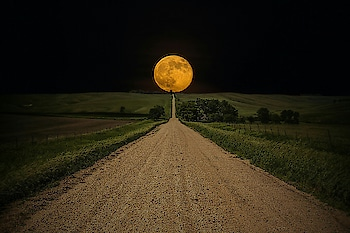 #the way to the moon