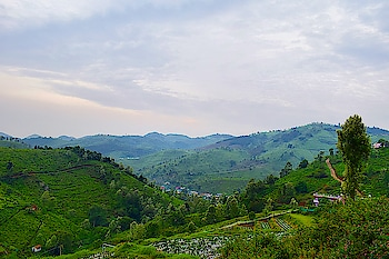 #travel #hills #hillstation #nature #greenry #landscape #landscapephotography #roposo #captured #photo #photography
