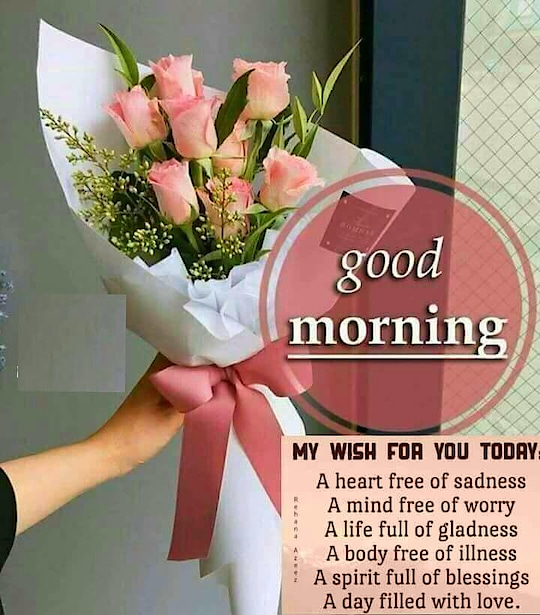 hi frds gm to all