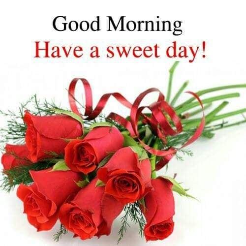 #dailywishes  #goodmorningpost #goodmorning #goodmorningfriends #goodmorningworld #goodmorningall