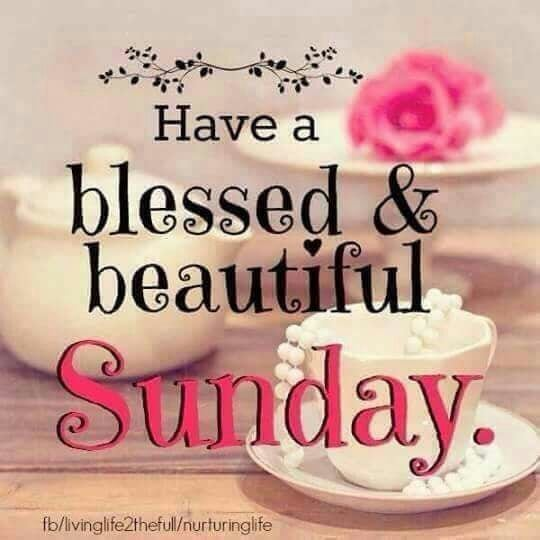 Stay Blessed🌹🌹💐💐