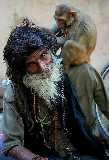 #monkey #varanasi #baba #indian #jammukashmir #roposo #talenthunt #talent #talentroposo #talenthuntroposo #kasol #delhibeautyblogger #fashionstatement  #monkeybaba