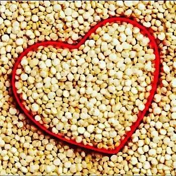 #Repost @zaritpedraza with @get_repost ・・・ #amaranth #amaranto #healrhylifestyle #healthylife #healthyeating El consumo del amaranto o huautli estaba muy arraigado entre los aztecas, era considerado un alimento ritual, que se utilizaba en la elaboración de diversos alimentos como atoles, tamales, pinole y tortillas, y sus hojas, se consumían también como verdura. La nutrióloga Laura Romero del centro Nutrest y la dermatóloga Rossana Janina de la Fundación Mexicana para la Dermatología nos hablan de este rico alimento. Propiedades nutricionales 1. Contiene entre 15 y 17 % de proteína. Presenta un excelente balance de aminoácidos (lisina, fenilalanina, leucina, valina, treonina, isoleucina, metionina, triptófano). Entre un 50 y 60%, de almidón, lípidos de 7 a 8%, calcio, hierro, fósforo , potasio, zinc, ácido fólico y magnesio, así como vitamina A , B1, B2 B3, C y fibra. Beneficios para tu salud 2. Contribuye a controlar los niveles de glucosa en sangre. Además, contiene una coenzima (HMG-CoA) con actividad biológica para disminuir las concentraciones de triglicéridos y colesterol. 3. El grano de amaranto no posee gluten, por lo que es un alimento recomendable para celíacos, es decir, aquellas personas que tienen intolerancia a este elemento. 4. Su contenido de fibra mejora el tránsito intestinal, previene el estreñimiento, así como los divertículos, y además proporciona alimento para el crecimiento de bacterias buenas intestinales. 5. La amarantina (proteína presente en el amaranto), tiene la capacidad de disminuir la presión arterial, ayudando a prevenir y controlar algunos padecimientos crónicos (cardiacos, renales y cardiovasculares). 6. Ideal en anemias y desnutrición porque es un alimento rico en hierro, proteínas, vitaminas y minerales. 7. Inhibe la proliferación de células cancerígenas, por lo que ayuda en la prevención de diversos tipos de cáncer, tales como; colon, mama, cervicouterino, entre otros. 8. Su aporte de sodio, potasio, zinc, cobre, magnesio, y hi