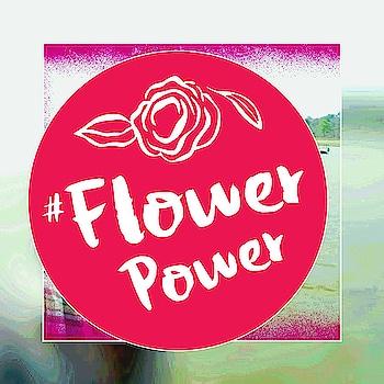 #travelinstyle #flowerpower