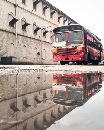 👉Daily Feature  #indian #india #photo #photography #photographer #pic #storiesofindia #indianphotography #indianphotographers #streetphotography #streetphotographyindia #itz_mumbai #nature #official_photography_hub #indianshutterbugs #indiaclicks #_coi #india_everyday #i_hobbygraphy #igersoftheday #mumbai_diaries #dslr_official #streetphotographymumbai #india_clicks #_soimumbai #photographers_of_india #beautifuldestinations #earthpix #worldpix