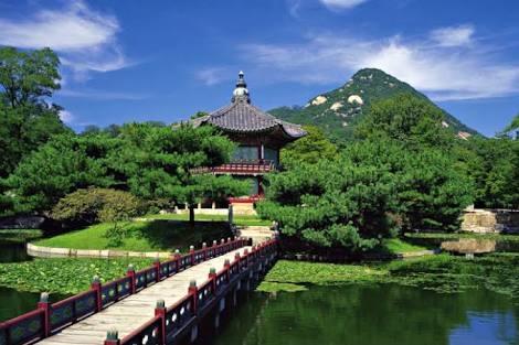 jeju island love the breeze #jeju #island #love #breeze #throwback#beautifulthings  #sweetmemories #memories #natural #beauty #loveing #jejuisland #southkorea #seoul #busan