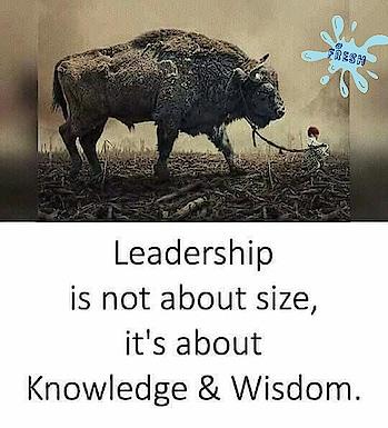 Leadership #fresh