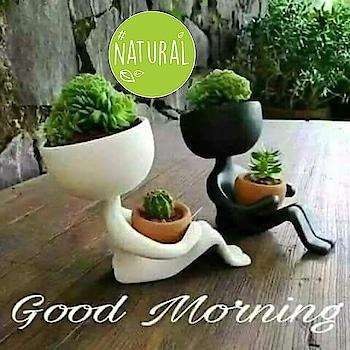 Good morning..... #natural