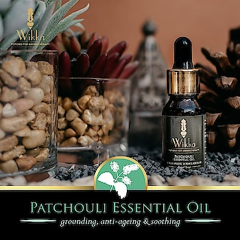 """Called """"the scent of the sixties,"""" this phenomenal oil has extraordinary health benefits Aroma: rich herbaceous earthy Attributes: grounding, anti-aging, soothing  Buy now at www.wikka.in   #wikka #Wikkaaromatherapy #wikkaessentialoils #essentialoil #essentialoils #rich #herbaceous #earthy #grounding #antiaging #soothing #natural #blogger #bblogger #beauty #beautyblogger #follow #aroma #aromatherapy #aromaoils #like #scent #delhi #mumbai #india #extraordinary #health #healthbenefits #welness"""