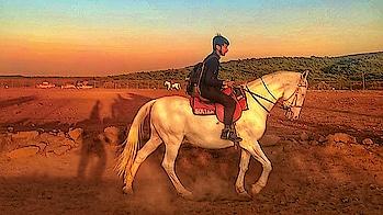 New City New Experience #Horse_Riding #Mahableshwar . . . . . . #horses #horse #horsesofinstagram #horseshow #horseshoe #horses_of_instagram #horsestagram #instahorses #wild #mane #instagood #grass #field #farm #nature #pony #ponies #ilovemyhorse #babyhorse #beautiful #pretty #photooftheday #gallop #jockey #rider #riders #riding