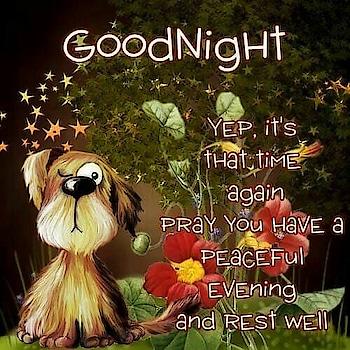 #goodnight #sweetdreams