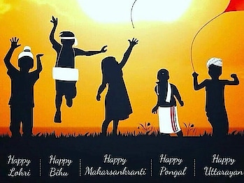 Happy Pongal #pongal #sankranti #lohri #uttarayan #bihu #happy makarsankrant
