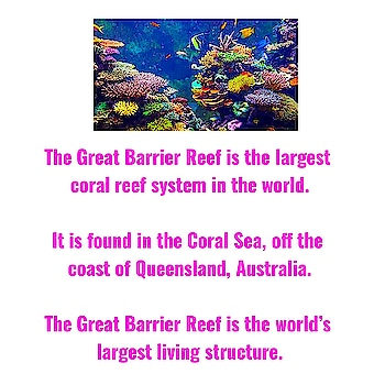 The Great Barrier Reef is the largest coral reef system in the world.  It is found in the Coral Sea, off the coast of Queensland, Australia.  The Great Barrier Reef is the world's largest living structure.  It is made up of around 2900 individual reefs and 900 islands.  The Great Barrier Reef is around 2600 kilometres (1616 miles) in length.  Astronauts can see the Great Barrier Reef from space.  Marine animals called coral play an important role in the formation of the Great Barrier Reef.  Coral create calcium carbonate which forms a hard, shell-like skeleton.  The Great Barrier Reef is home to a wide range of life, including fish, sea turtles, giant clam, seahorse, sea snakes, nudibranch, sea turtles, stingray, sharks and many more.  Over 1500 different species of fish live in the Great Barrier Reef, including clownfish, star of the animated film Finding Nemo.  Whales, dolphins and dugong can also be seen in the Great Barrier Reef.  Climate change is perhaps the biggest threat to the Great Barrier Reef.  Warmer ocean temperatures put stress on coral and lead to coral bleaching.  The Great Barrier Reef is a popular tourist destination with around 2 million visitors every year.