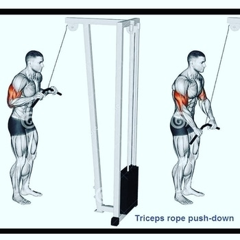 Best workout to target lateral muscles of triceps   #tricepsworkout  #lifestyle  #dedication #motivation #bigbench #grow #gymlife #focus #shredded #trainhard #ripped #pushpullgrind #muscle #instafit #squat #instafitness #fitnessgear #fit #grind #gym #sweat #grindout #strength #flex #fitness #fitnessblog #dilshadfitness
