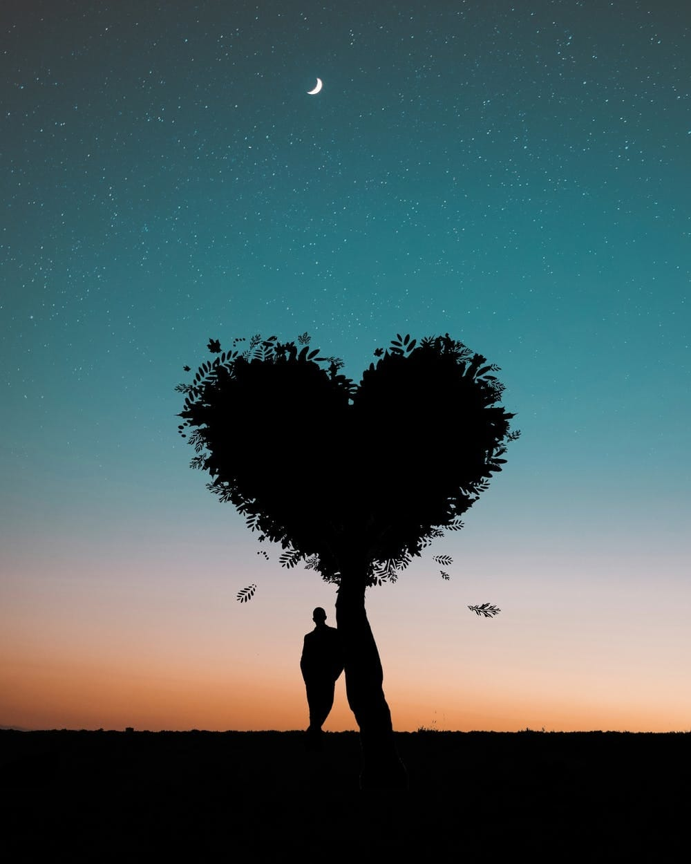 #goodmorning-roposo #goodmorning #capturedchannel #caputretv #captured #wallpapers #images #photo #love #roposo-goodnight #night #roposo-morning #photographyislife #rose #valentine #love #couple-photography #love-couple #couplegoals