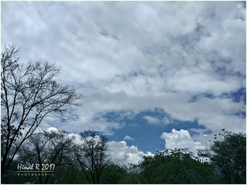 #clearsky #colors #natureaddicted #photooftheday