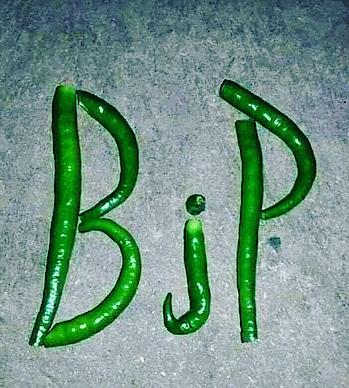 Mujhe to #BJP lag Raha hai. Kisiko #Mirchi lage to Mai kya karu ?🤪🤣  #Namoagain2019