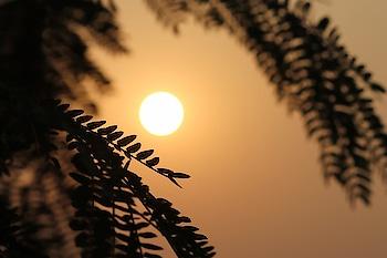 #photography #artsypics #myfriend's #collection #photographerslife #sunrising