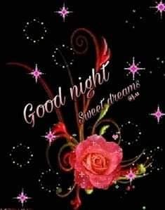 #goodnight #goodnightpost #dailywishes #roposo-dailywishes
