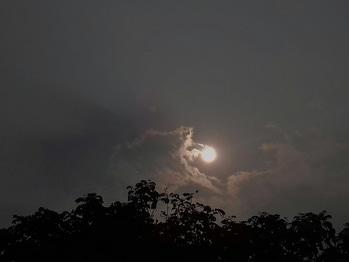 The evening glow of Sun....#roposotalenthunt #nature #sun #cloudy #myclicks😊😎