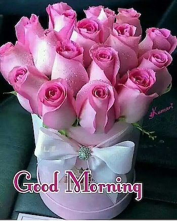 Good Morning All friend's