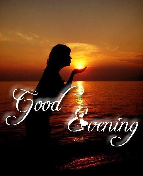 #goodmorning #goodevening #goodeveningeveryone #goodeveningpost #goodeveningquotes #goodeveningfriends #goodeveningall #goodeveningroposo #goodevenig #goodeveningguys #good_evening_bangaram#goodeveningroposostars #goodeveningfriendss