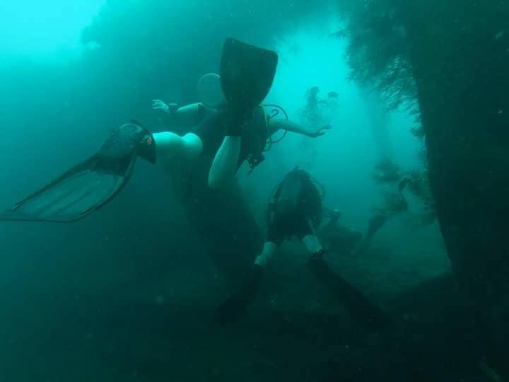 underwater diaries!! #scubadiving #scuba #photo-shoto #photogenic #gopro #photography #photographerslife #indonesia #padi #rescuediver #roposo #men #post #addiction #adventure #adventuretime #wanderlust #menonroposotravelling #travel #musafir #musafirchannel #soul #travel-diaries #travellife #travel-love