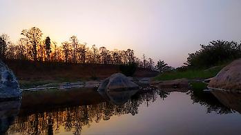 #sunset #tree #revere #reflection #nature #water #photoshoot