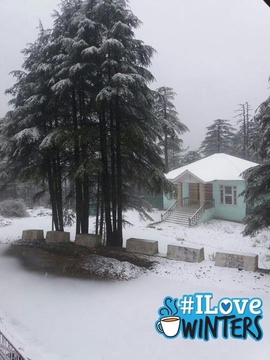 Travel Diaries  #patnitop #travel #traveldiaries #snowfall #roposotalks #twinklewithmystyle #ilovewinters