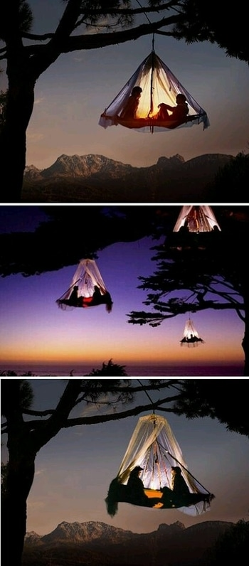 sunset tree camping Bavarian mountain Germany.