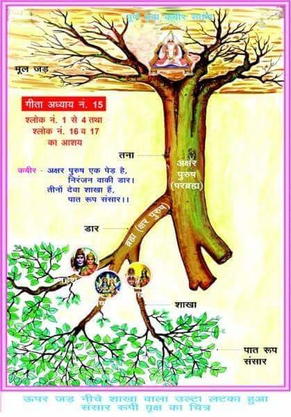 """[01/10, 19:18] दोलत दास चंडीगड़: Similarly, the Almighty KavirDev (Supreme God Kabir) created three other lower Loks (places), Agam Lok, Alakh Lok & Satlok) with Shabd (word). This Almighty KavirDev (Supreme God Kabir) only then appeared in Agam Lok and is also the Master of Agam lok and there His title (of the position) is Agam Purush i.e. Agam Prabhu. This Agam God's human-like visible body is very bright. The light of whose one hair follicle is more than the combined light of kharab2 suns. This Complete God KavirDev (Kabir Dev = Supreme God Kabir ) appeared in Alakh Lok and He Himself is also the Master of Alakh Lok, and the title (of the position) 'Alakh Purush' also belongs to this Supreme God only. This God's human-like visible body is very effulgent (swarjyoti), is self-illuminated. The light of his one hair follicle is more than the light of arab3  suns. This very Supreme God appeared in Satlok and He only is also the Master of Satlok. Therefore, His title (of the position) only is SatPurush (the Immortal/Eternal God). He alone is also known as Akaalmurti - Shabd Swaroopi Ram - Purna Brahm - Param Akshar Brahm etc. This SatPurush KavirDev's (God Kabir's) human-like visible body is very bright whose one hair follicle's brightness is more than the combined light of crore suns and moons. This KavirDev (God Kabir), appearing in SatPurush form in Satlok and sitting there, first did other creation in Satlok. With one shabd (word), He created sixteen dweeps (islands). Then with sixteen shabds (words), gave rise to sixteen sons. He created one Mansarover (a very big lake in Satlok named Maansarover) and filled it with nectar. The names of the sixteen sons are: - (1) """"Kurm"""", (2) """"Gyani"""", (3) """"Vivek"""", (4) """"Tej"""", (5) """"Sahaj"""", (6) """"Santosh"""", (7) """"Surati"""", (8) """"Anand"""", (9) """"Kshma"""", (10) """"Nishkaam"""", (11) """"Jalrangi"""", (12) """"Achint"""", (13) """"Prem"""", (14) """"Dayaal"""", (15) """"Dhairya"""", (16) """"Yog Santayan"""" alias """"Yogjit"""". SatPurush4  KavirDev entrusted the rest of Satlok's creation wo"""