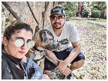 When bira is like I am done with the photoshoot can we go to the pool please .. Wana meet my buddies... 😂😂 Bira - @d_himalayanguy ka beta 😎  #poolparty #dogpoolparty #bira  #love  #dog #doglover #furbaby #poolparty #pool #animals #animal #fun #positivevibes #positivity #bestdayever #daniffsofinstagram #daniff #daniffpuppy #dogoftheday #dogsofinstagram #dogsofinstaworld #bestdog #bira #babybira #oneyearolddog #furbaby #daniffsofinstagram #daniffpuppy #nature #perfectpicture