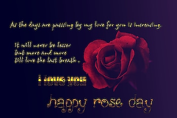 happy rose day #valentine #valentinespecial #valentineweek #roseday2019