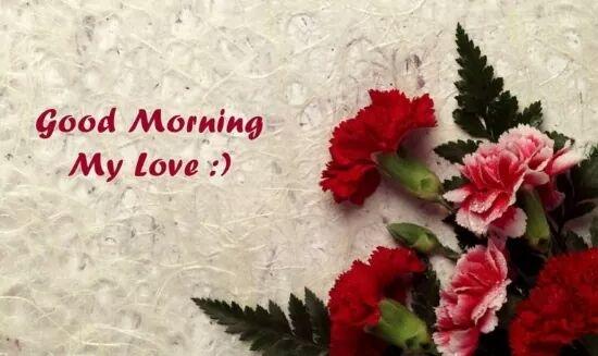#goodmorning  #mylover