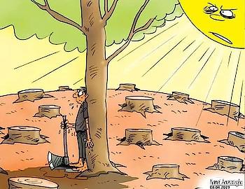 #savetrees #savelives