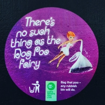 Yes indeed, there is no such thing as a dog poo #fairy. Are you reading this, dog owners in India? We go for our morning #walk in #Southwark Park in #Bermondsey, London... and the dog owners here are careful. Even dogs don't take any pangas here. Very bibba dogs.  #poo #dog #dogpoo #London #India #uk #travel #travels