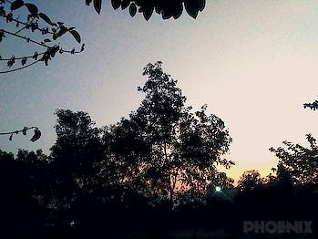 #goodevening #photography #mobilephotography #nature #naturebeauty #evening  Click: Sandeep