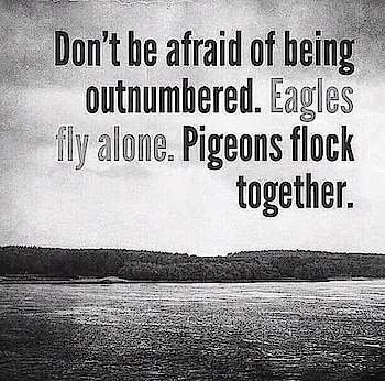 Eagles fly alone