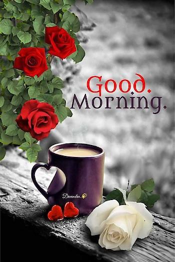 #goodmorning #dailywisheschannel #coffee #tea #haveagreatday #roposoposting