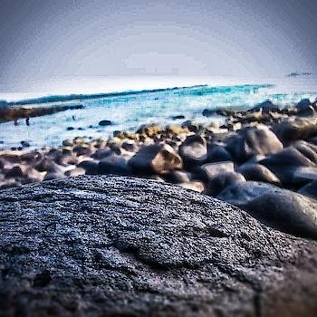 #throwback#mood#beachside#seashore#seashell#sunnyday#evenglook#sand#photogenic#natural-look#naturelover#love-photography#likeforlike#roposo-style#roposolove#roposogal#roposomood#roposolook#followmeonroposo#roposo#dontforgettofollow🌈🌊☁☂📷