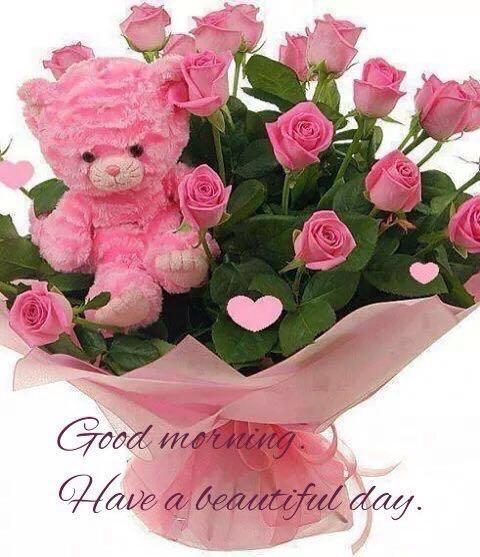 #goodmorning #goodday  #takecare  #lovelyday #niceday #cool #stressfree #enjoyday #fun #happy #smile