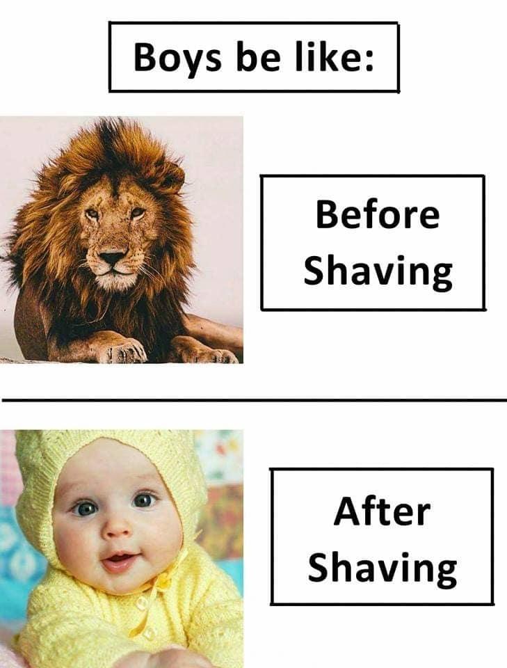 #HahaTV #Funny #Lol #Boys #beardlove