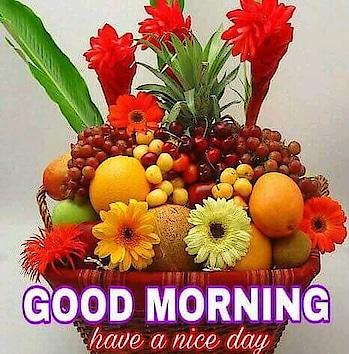 Good Morning folks! #dailywishes #goodmorning #happytuesday #dailywisheschannel #haveaniceday #roposopost #roposomorning