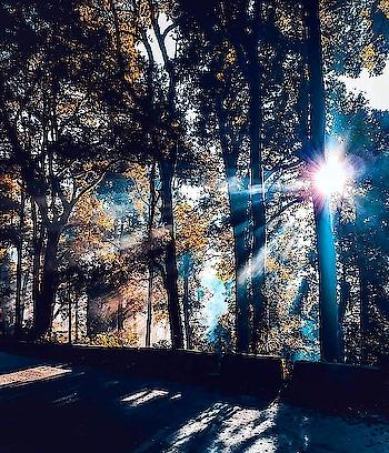 Calcutta's favourite hill station 🌄🧦🧤🧣 • What's your favourite part about a Darjeeling trip?🌄🚌 •  •  #hillstationsofindia #westbengaldiaries #storiesofkolkata #ourcitykolkata #cal_calling #westbengal #westbengaltourism #hillstation  #instayum #kolkatadiaries #darjeelinglimited #kolkatagram #foodtalkindia #darjeelingdiaries #kolkatablogger #darjeeling #calcuttacacophony #kolkatafood #kolkata_igers #sodarjeeling #onlyinbengal #ig_calcutta #desi_diaries #igtravel